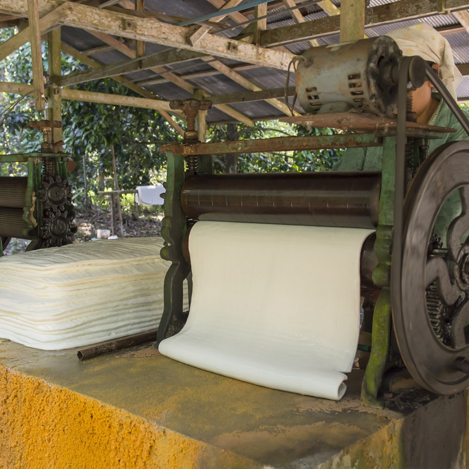 FleXband: Malaysia Natural Rubber You Must Know