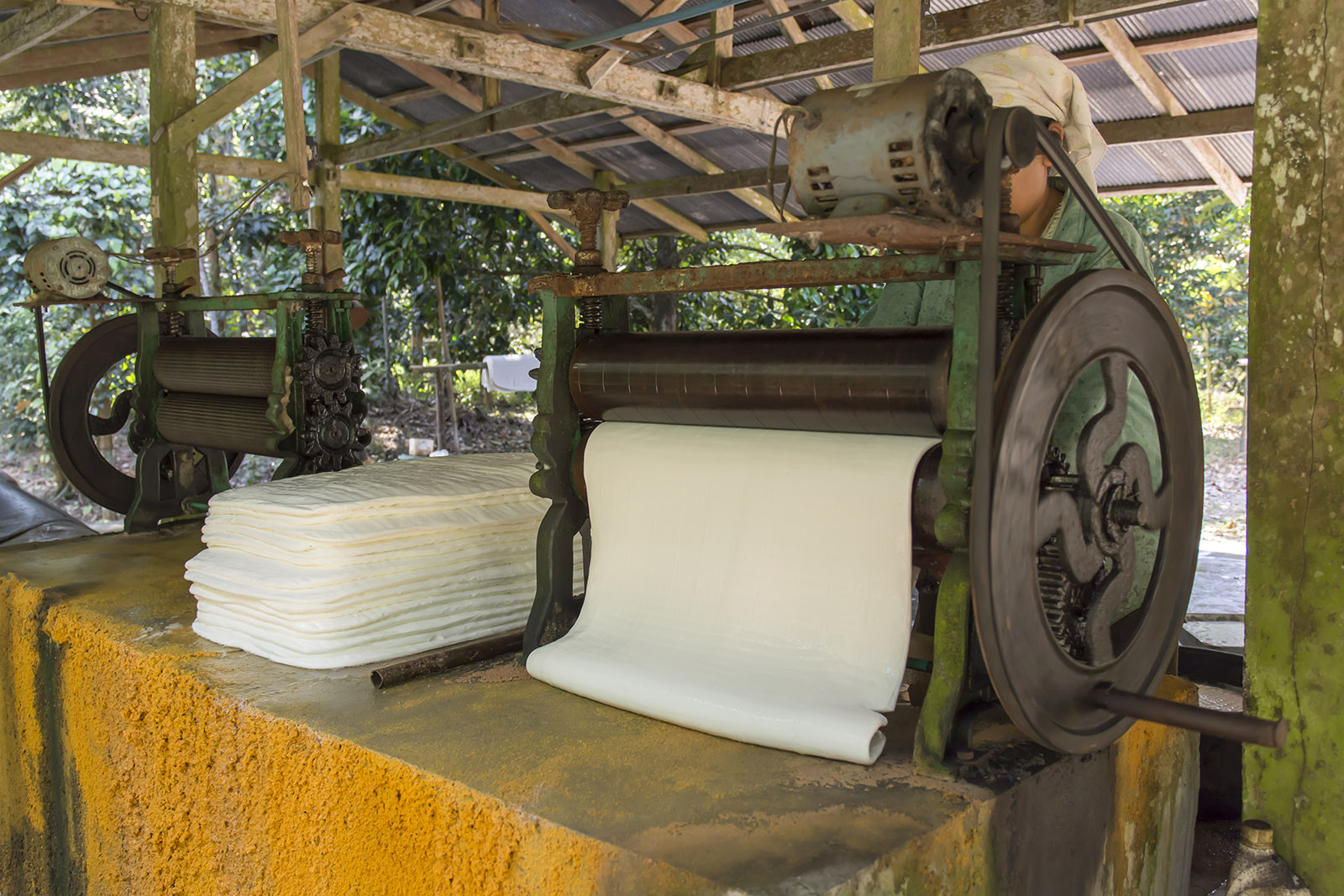Flexband Malaysia Natural Rubber You Must Know